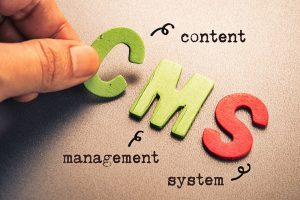 which cms for your business